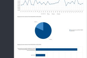 Service usage screenshot - Cloud Management Portal
